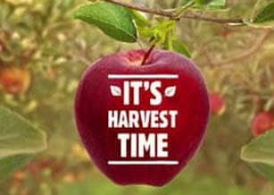 Harvest Time Ep 1